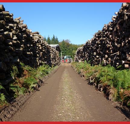 Douch Biomass